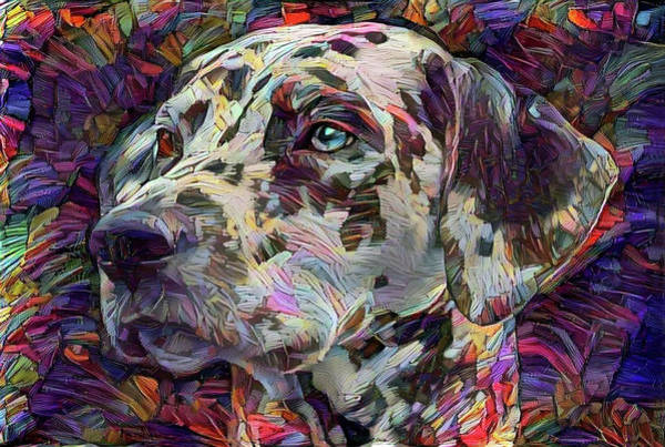 Digital Art - Colorful Dalmatian Dog Portrait by Peggy Collins
