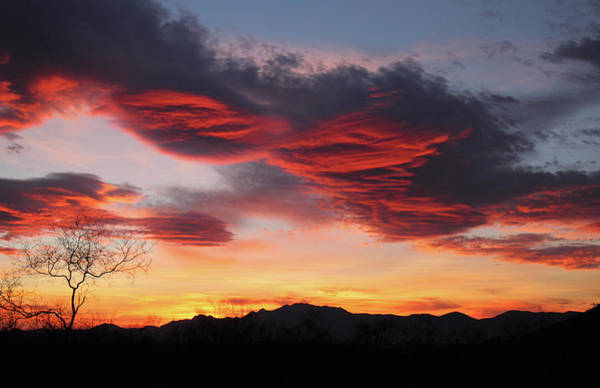 Photograph - Colorful Dawn Over New Mexico's Peloncillo Mountains by Steve Wolfe