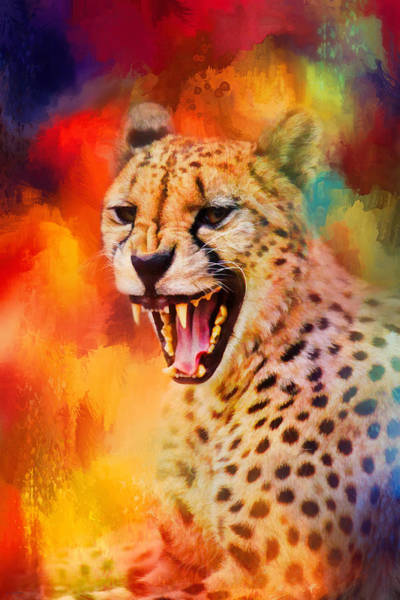 Photograph - Colorful Expressions Cheetah 2 by Jai Johnson