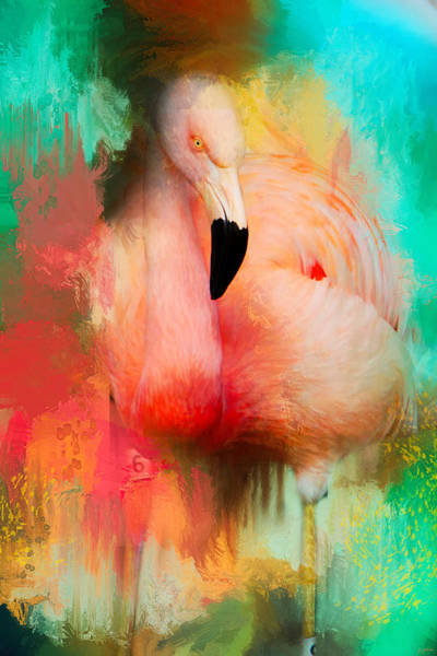 Photograph - Colorful Expressions Flamingo by Jai Johnson
