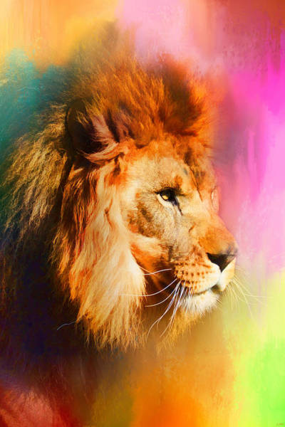 Photograph - Colorful Expressions Lion by Jai Johnson