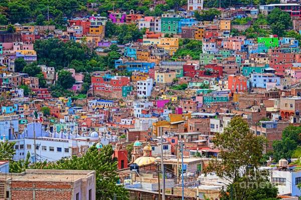 Photograph - Colorful Houses In Guanajuato by Tatiana Travelways