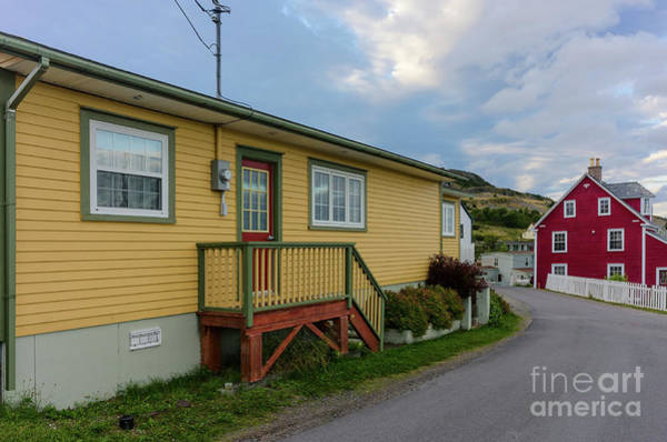 Photograph - Colorful Houses In Trinity, Newfoundland by Les Palenik