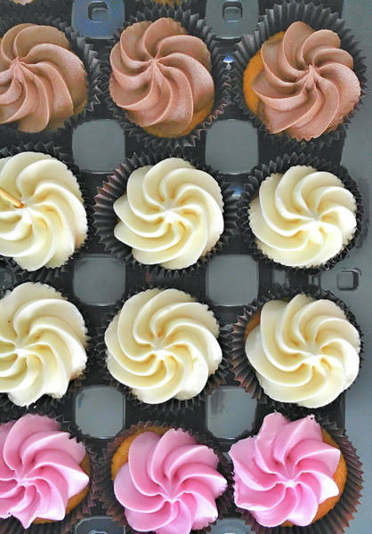 Wall Art - Photograph - Colorful Iced Cupcakes by Tom Gowanlock