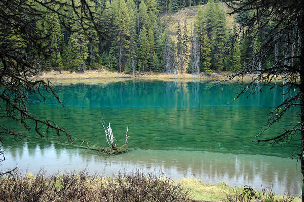Photograph - Colorful Lake In Jasper National Park by Pierre Leclerc Photography
