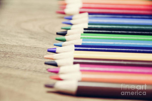 Photograph - Colorful Life by Andrea Anderegg