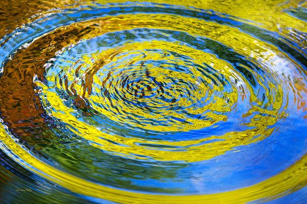 Photograph - Colorful Nature Abstract by Christina Rollo