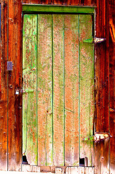 Photograph - Colorful Old Barn Wood Door by James BO Insogna