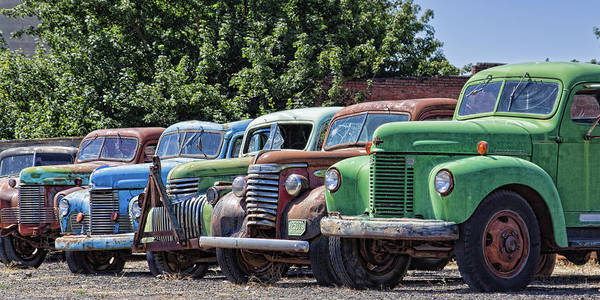 Photograph - Colorful Old Rusty Cars by Tatiana Travelways