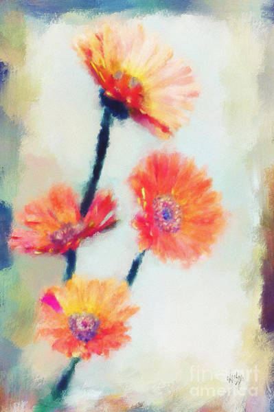 Photograph - Colorful Orange Zinnias by Lois Bryan