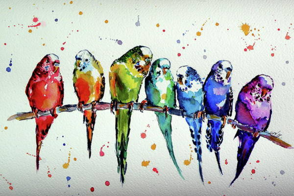 Wall Art - Painting - Colorful Parrots by Kovacs Anna Brigitta