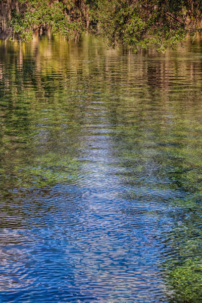 Photograph - Peaceful Reflections by John M Bailey