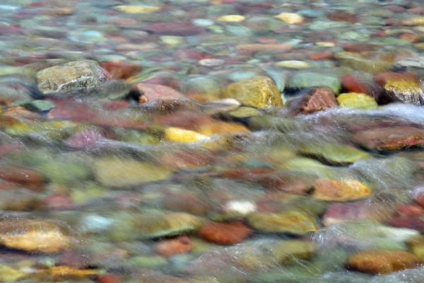 Photograph - Colorful Rocks In Two Medicine River In Glacier National Park by Bruce Gourley