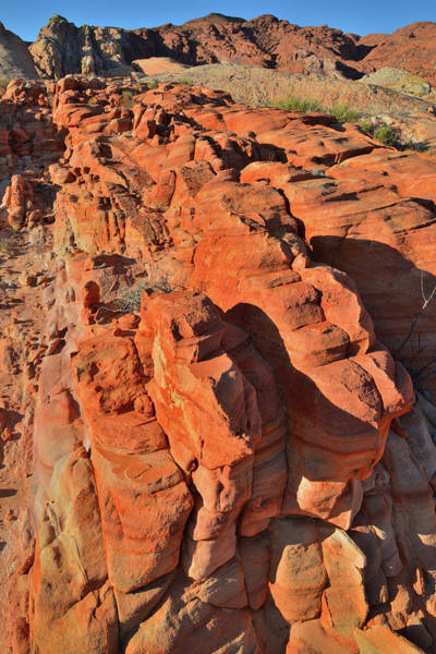 Photograph - Colorful Sandstone Ridges Of Valley Of Fire by Ray Mathis