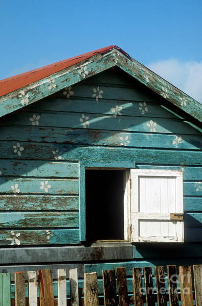 Abode Photograph - Colorful Shack by John Greim