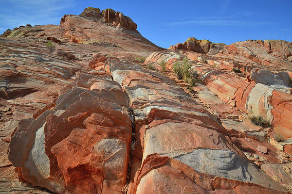 Photograph - Colorful Slopes Of Valley Of Fire by Ray Mathis