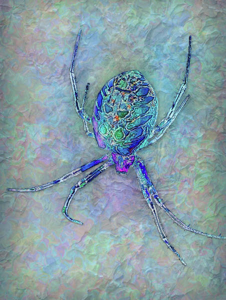 Wall Art - Painting - Colorful Spider by Jack Zulli