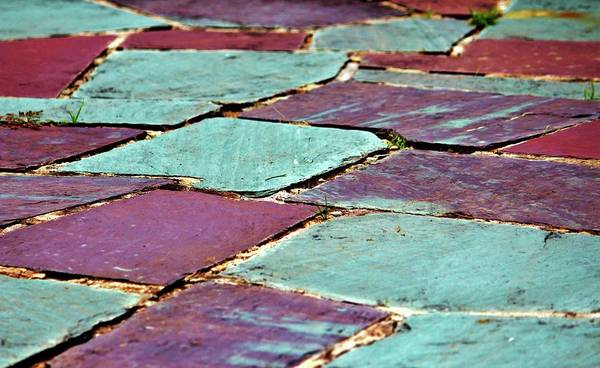 Photograph - Colorful Stepping Stones by Cynthia Guinn