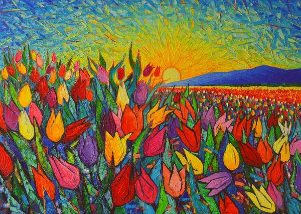 Dutch Tulip Painting - Colorful Tulips Field Sunrise - Abstract Impressionist Palette Knife Painting By Ana Maria Edulescu by Ana Maria Edulescu