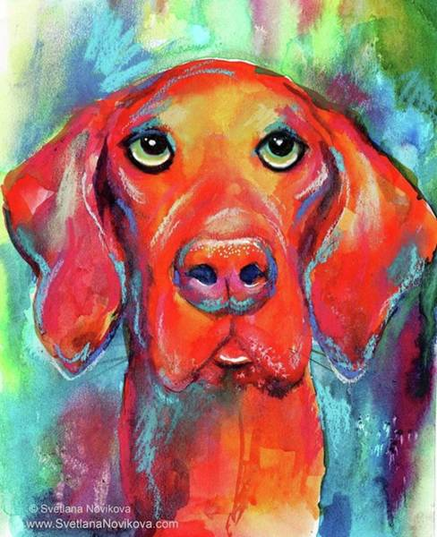 Wall Art - Photograph - Colorful Vista Dog Watercolor And Mixed by Svetlana Novikova