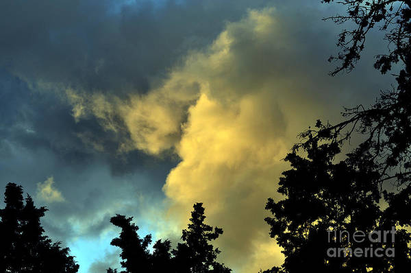 Photograph - Coloring Clouds by Clayton Bruster