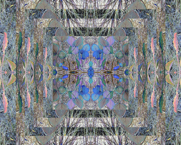 Digital Art - Colorized Aspen Kaleidoscope by Julia L Wright