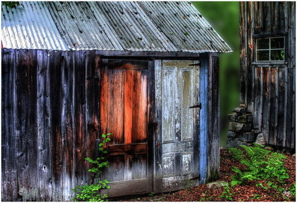 Photograph - Colors In A Woodshed by Wayne King