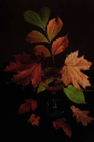 Photograph - Colors In The Glass by Randi Grace Nilsberg