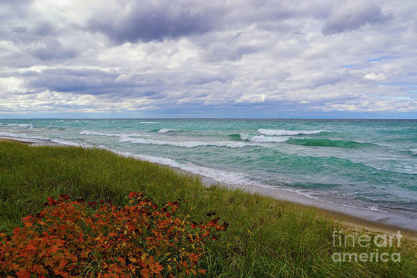 Photograph - Colors Of Autumn On Lake Superior by Rachel Cohen