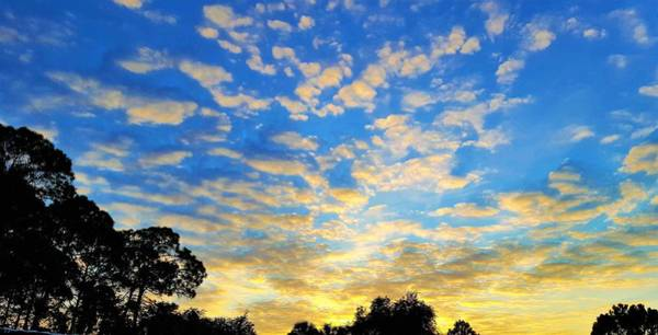 Morning Wall Art - Photograph - Colors Of Dawn by Ric Schafer