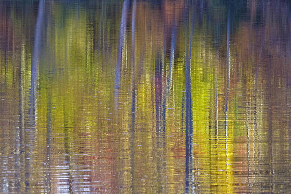 Photograph - Colors Of Fall 02 by Jim Dollar