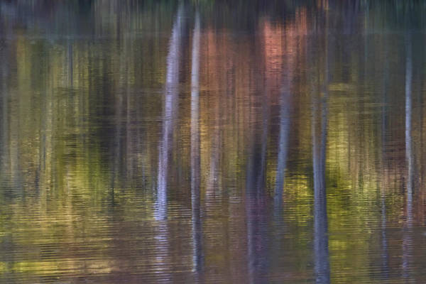 Photograph - Colors Of Fall 03 by Jim Dollar