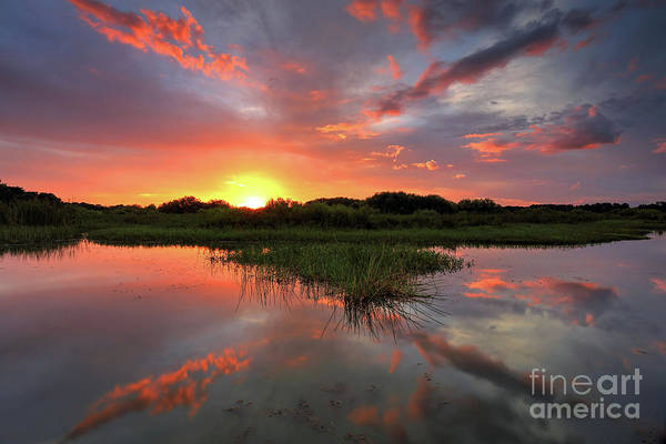 Wall Art - Photograph - Colors Of Sunset by Rick Mann