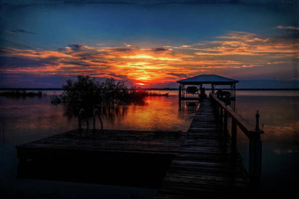 Photograph - Colors Of The Night by Debra and Dave Vanderlaan