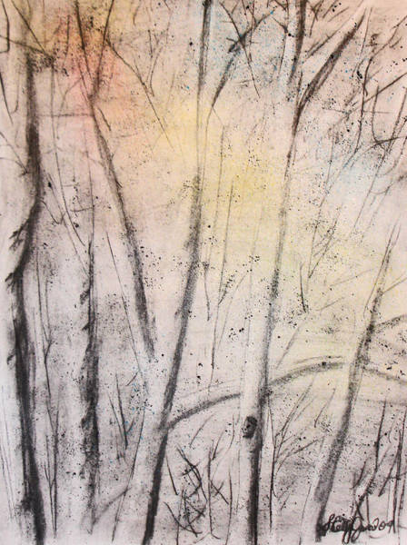 Drawing - Colors Of Winter by Shelley Jones