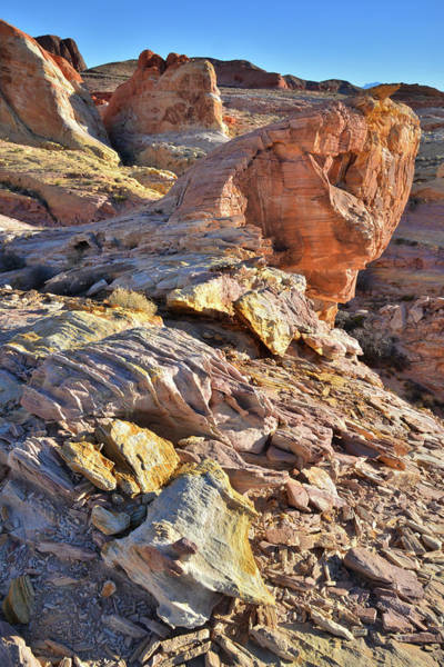 Photograph - Colors On The Edge In Valley Of Fire by Ray Mathis