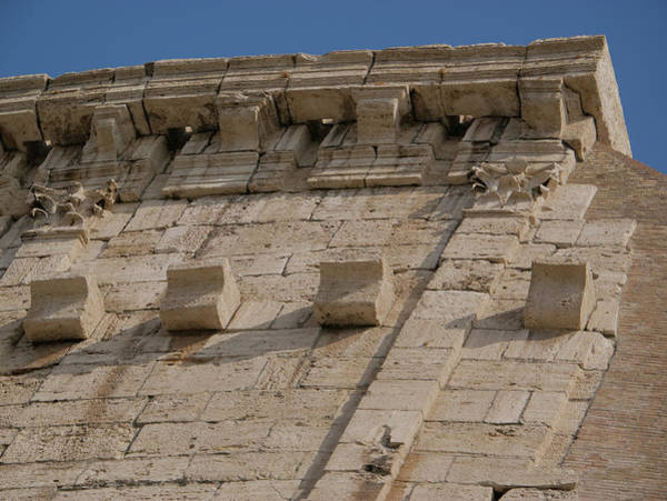 Photograph - Colosseum Cornice by S Paul Sahm