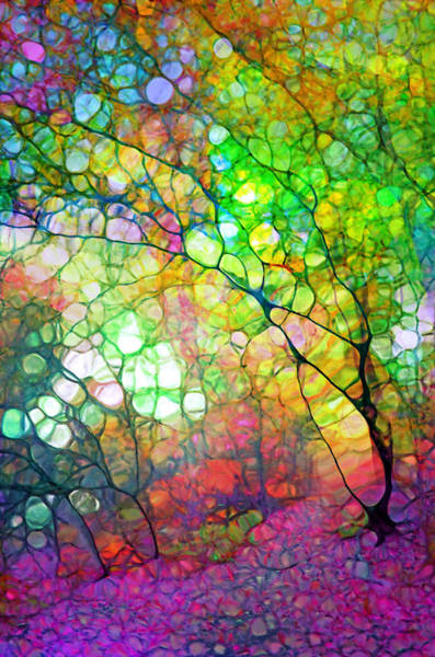 Colour Combustion Art Print