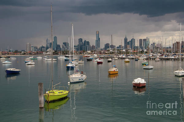 Photograph - Colour Of Melbourne 2 by Werner Padarin