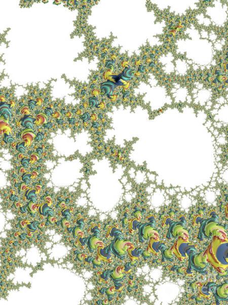 Digital Art - Coloured Winkles by Elaine Teague