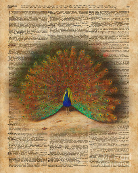 Wall Art - Digital Art - Colourful Beautiful Peacock Vintage Dictionary Art by Anna W