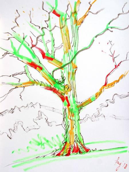 Drawing - Colourful Tree Drawing by Mike Jory