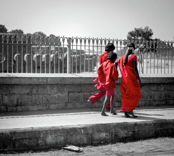 Wall Art - Photograph - Coloursplash India by Kyle Goetsch
