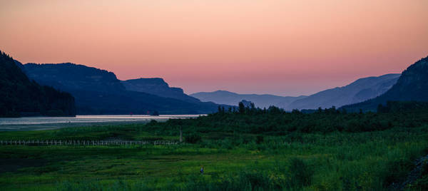 Photograph - Columbia Gorge by Nisah Cheatham
