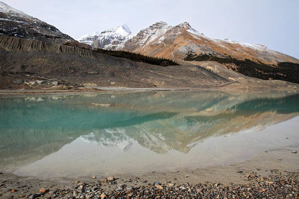 Photograph - Columbia Icefields In Jasper National Park by Pierre Leclerc Photography
