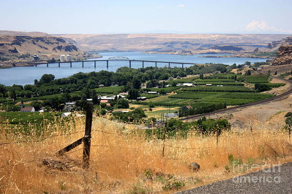 Photograph - Columbia River Gorge by Carol Groenen