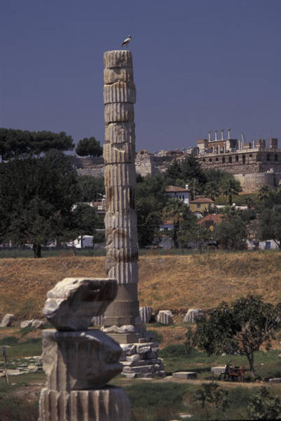 Artemis Photograph - Column Temple Of Artemis In Ephesus by Richard Nowitz