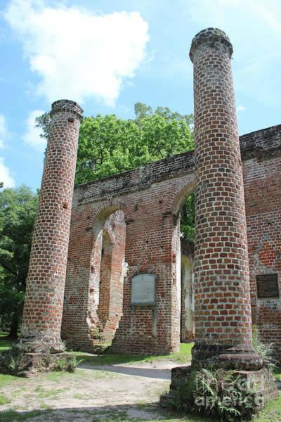 Photograph - Columns At Old Sheldon Church Ruins by Carol Groenen