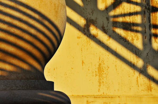 Skip Wall Art - Photograph - Comb Over by Skip Hunt