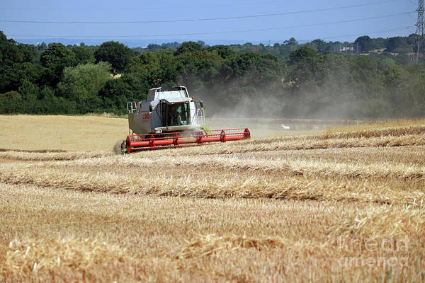 Photograph - Combine In Wheat Field by Julia Gavin